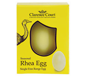 Rhea egg